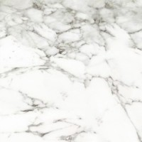 P14590931 Calacata Silver 43.5x43.5