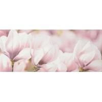 Керамическая плитка  розовая Gracia Ceramica 010301001712