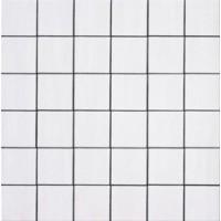 Мозаика матовая белая TES82915 Imola Ceramica