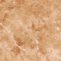 Керамогранит  глянцевый ProGRES Ceramica PR0003