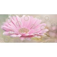 Керамическая плитка  розовая BELLEZA 04-01-1-08-05-23-370-1