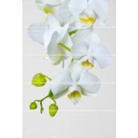 Керамическая плитка  с орхидеями Уралкерамика ВС7ФЕ021