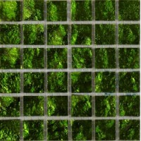 Мозаика  салатовая TES77897 Art & Natura