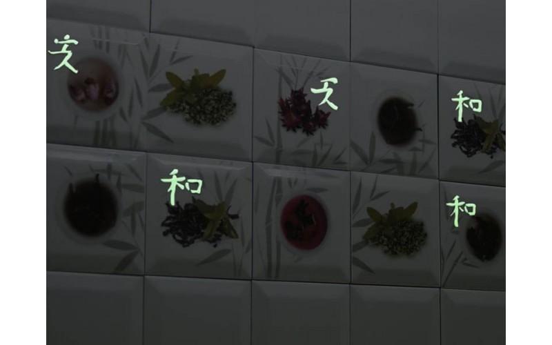 Керамическая плитка Коллекция AROMA FOSKER