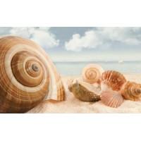 Керамическая плитка для ванной морская волна 121917 Кировская керамика