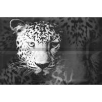 Composicion Leopard 30x45 (комплект 2шт)