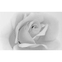 Керамическая плитка 10301001885 Gracia Ceramica (Россия)