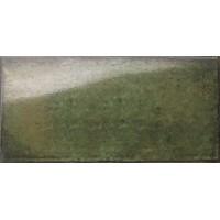 Catania Verde 15х30