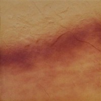 5470 Jesienny Lisc/Autumn Leaf x0.9 Rustic/структурная 30x30