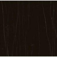 C221100181  Xlight Nylo Black Polished 120x120