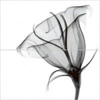 Керамическая плитка  для ванной черно-белая Уралкерамика PWU09EST2