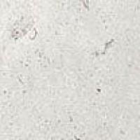 19244  MUSEUM T.HETTANGIAN-G/EP 8x8