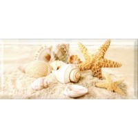 336763  Легенда Seashells 20x45