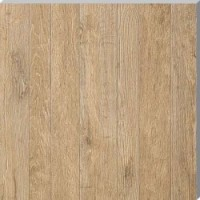 AE7F Axi Golden Oak LASTRA 20 60x60