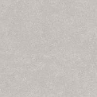 TES12557 Aston-R Nacar Antideslizante 59,3x59,3 59.3x59.3