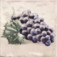 Decor CAMPESTRE-3 (виноград) 20х20