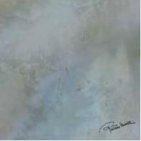 0531269 Brig.P.Rain.Firma Rt 80x80