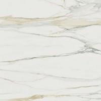 753298  I Classici Calacatta Gold Matte Ret 60x60