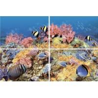 AL-P-RF1  Alba Reef-1 40x60