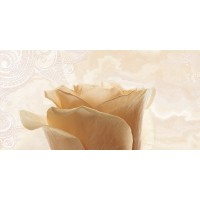 TES367 Charme Majestic-1 Decor Honey 25x50