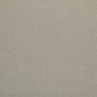 TES14810 Solid Silver Mat. 59,8х59,8 59.8x59.8