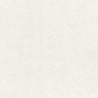 Керамогранит  белый Lasselsberger 5032-0126