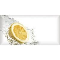 TES108048 Monocolor Decor Fresh Lemon 10х20 10x20