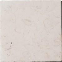 PAS2020C07 Travertin Limestone 20x20